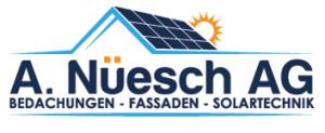 Albert_Nüsch_AG_Logo